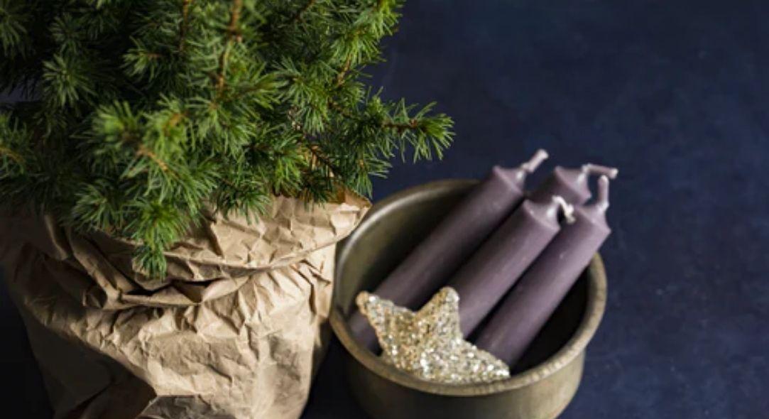 Celebrating the Advent-Christmas Season